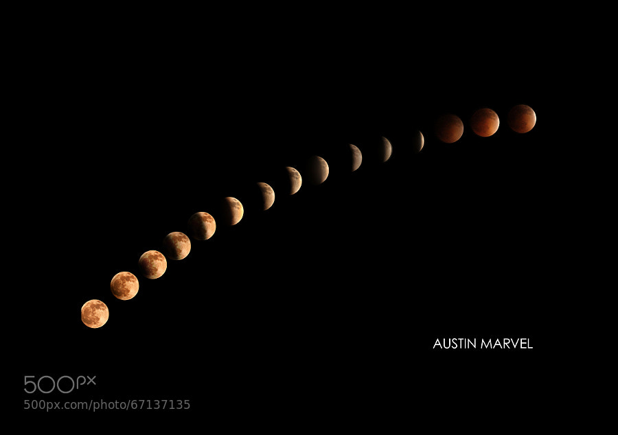 Photograph Blood Moon 2014 by Austin Marvel on 500px
