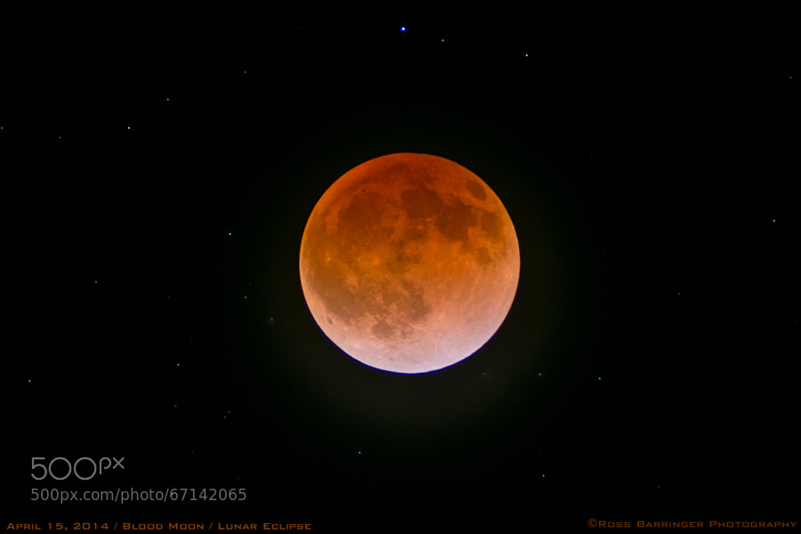 Photograph Blood Moon 02 by Ross Barringer on 500px