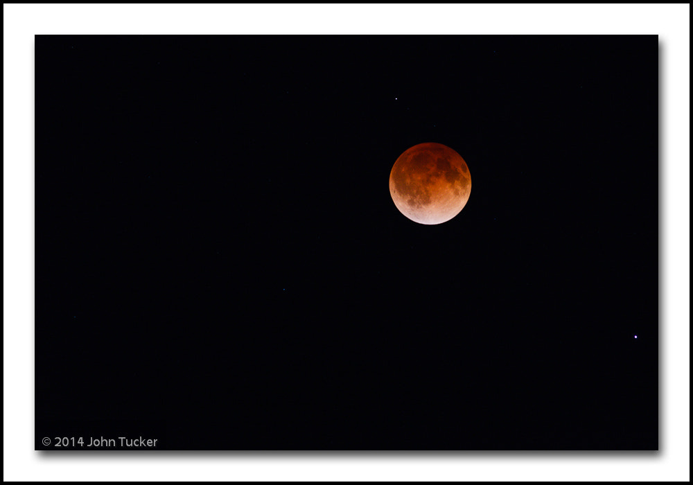 Photograph Lunar Elipse (Blood Moon) 4-15-14 by John Tucker on 500px