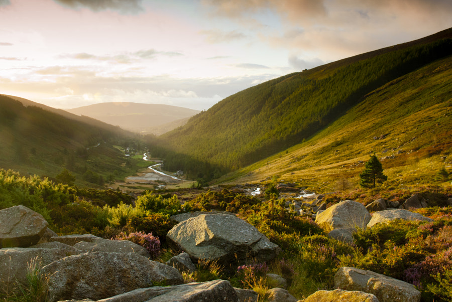 Wicklow Sunrise by Stefan Friedhoff on 500px.com