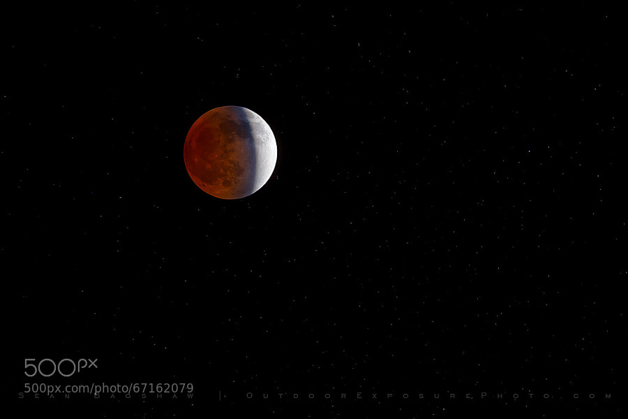 Photograph Blood Moon April 15, 2014 by Sean Bagshaw on 500px