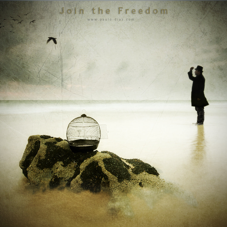 Photograph Join the Freedom by Paulo Dias on 500px