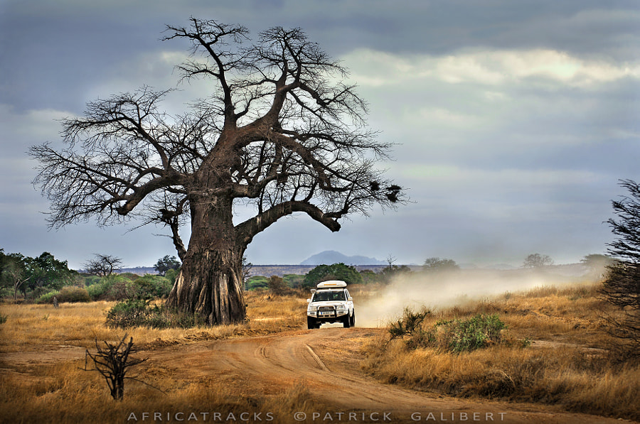 Photograph Travel in Tanzania  - Africatracks by Patrick Galibert on 500px