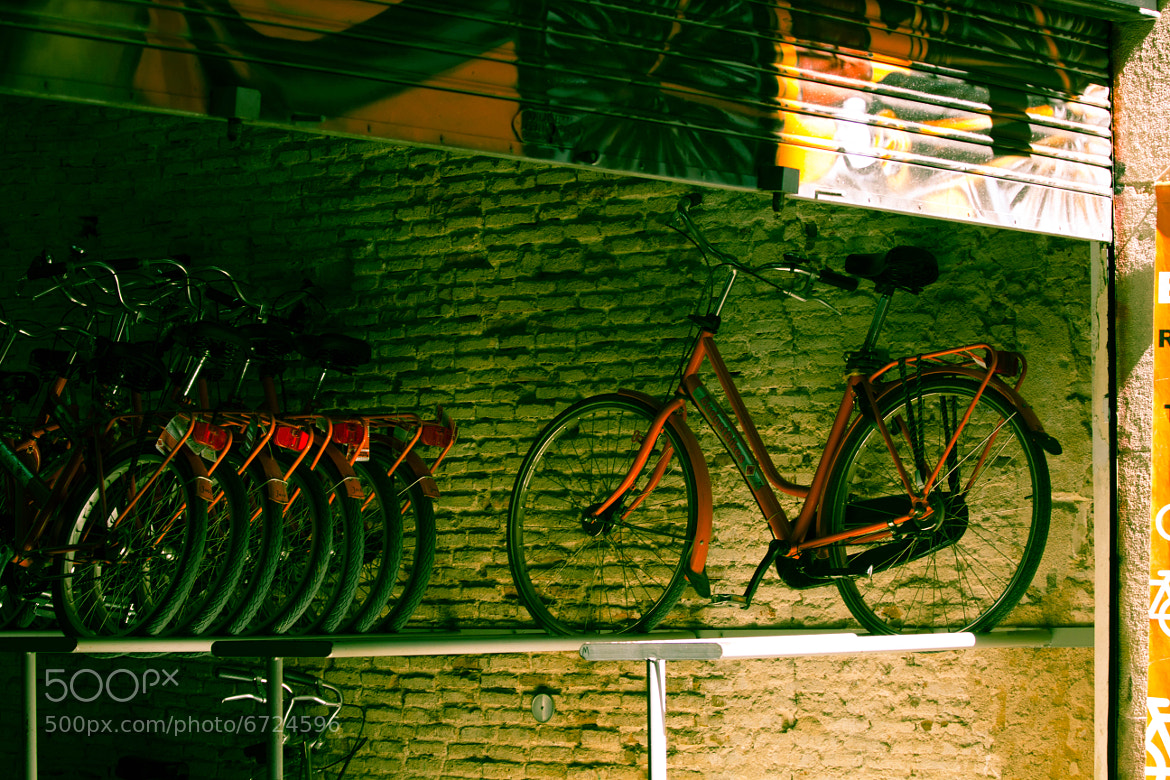 Photograph Singled out by Nirvitha  on 500px