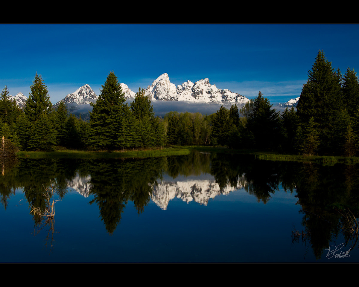 Photograph Grand Teton National Park - Schwabacher's Landing by Wil Bloodworth on 500px