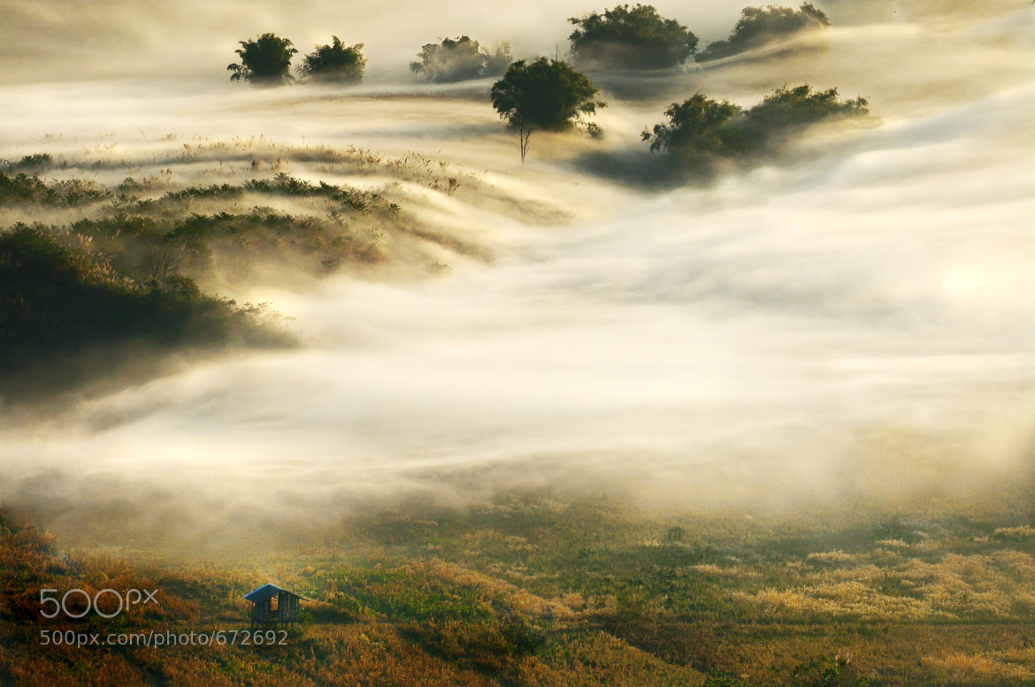 Photograph The Mist by joeziz Ekkachai on 500px