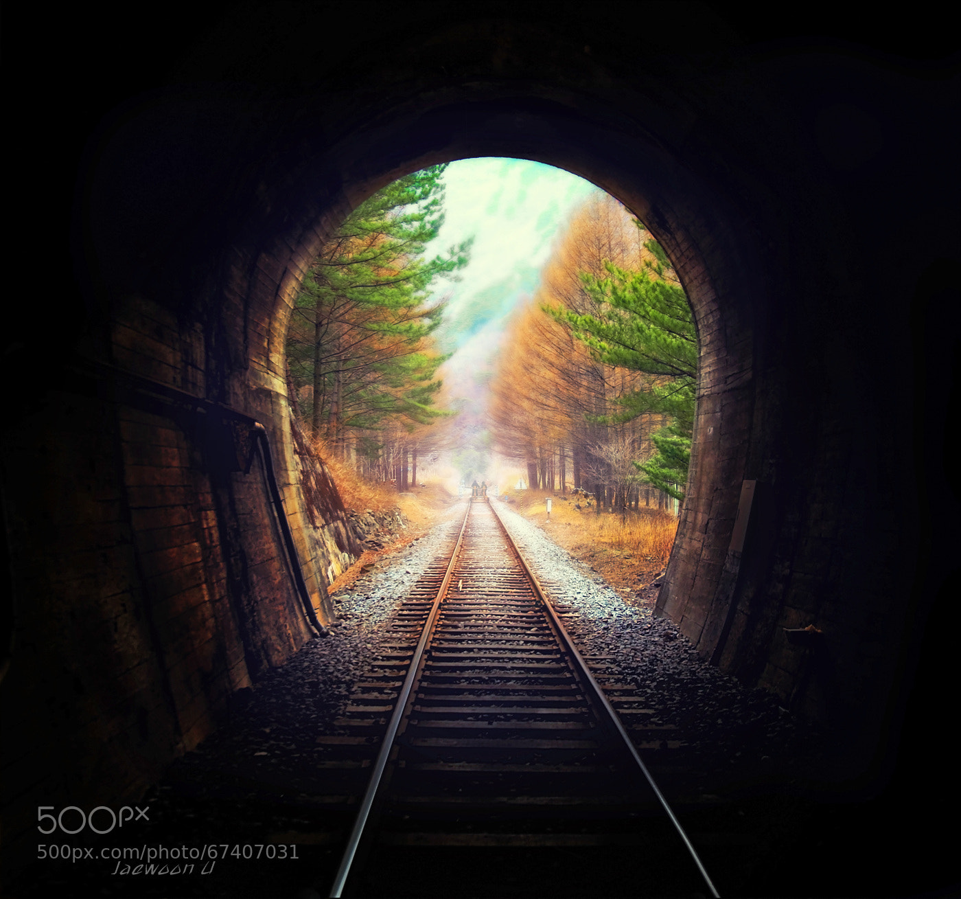 Photograph Into the light by Jaewoon U on 500px