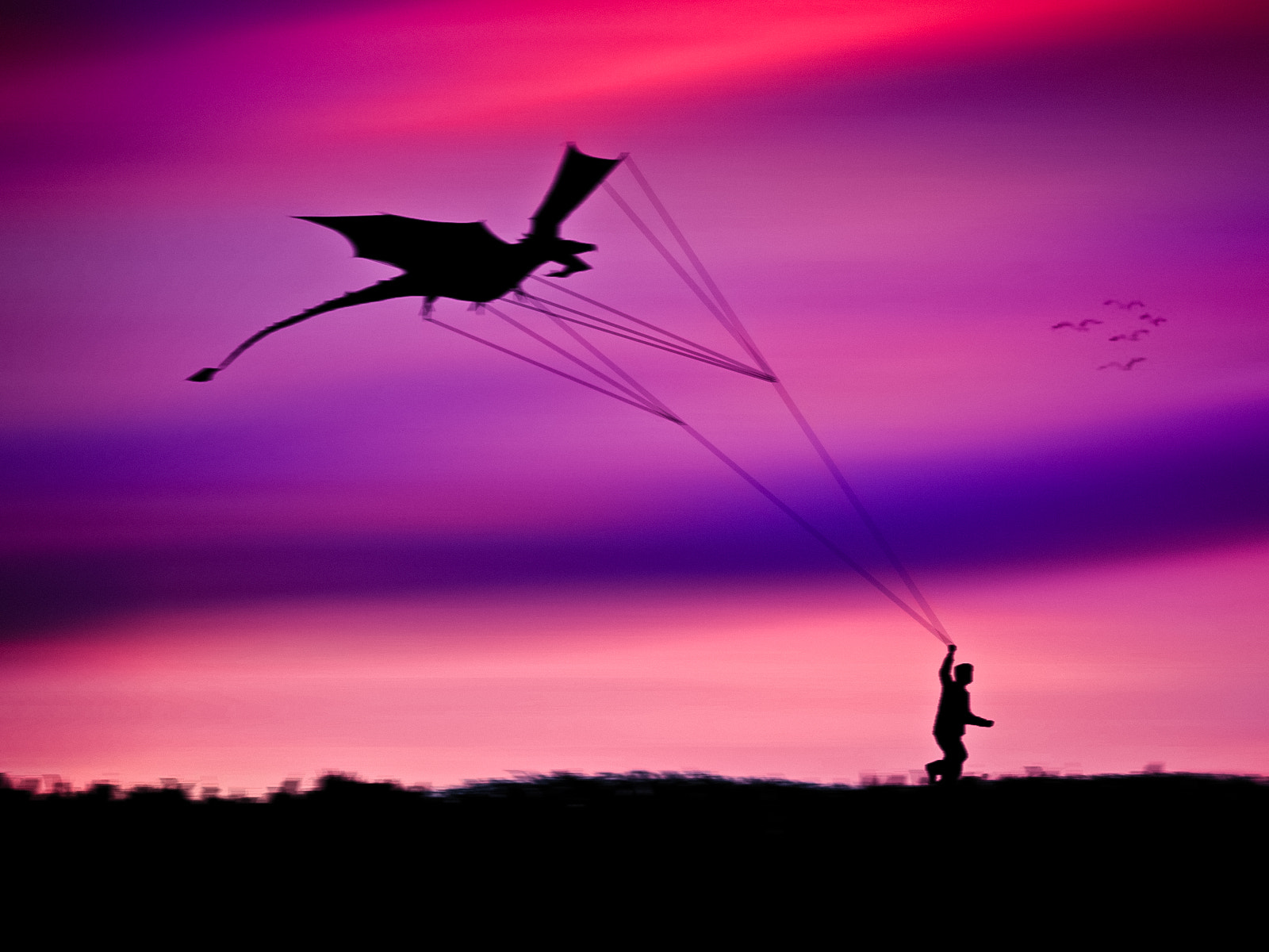 Photograph It's just a dragon kite. by mojaa neddo on 500px