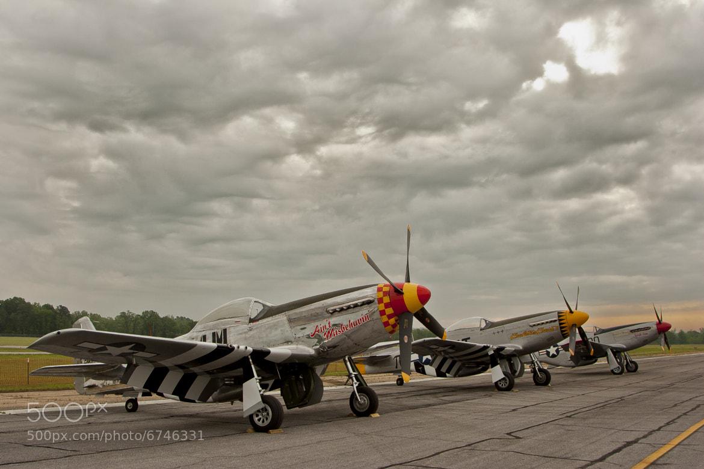 Photograph Mustangs, Mustangs, Mustangs by Jon Berry on 500px