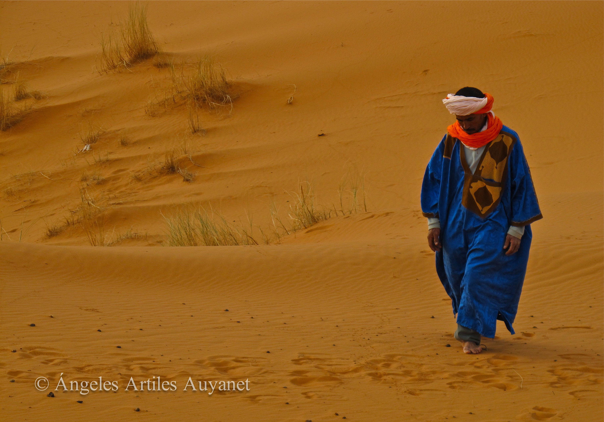 Photograph Looking for a beetle, Erg Chebbi Desert, Morocco by Ángeles A. Auyanet on 500px