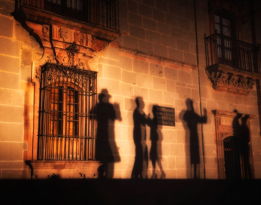 Photograph Salsa Shadows by Joan Herwig on 500px