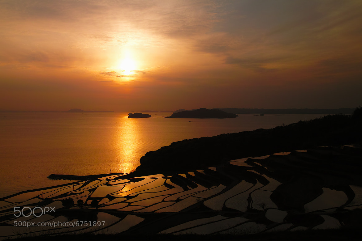 Photograph Spring Sunset by Junya Hasegawa on 500px