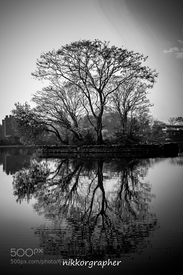 Photograph Reflection by Nikkorgraphy (Udhab) on 500px