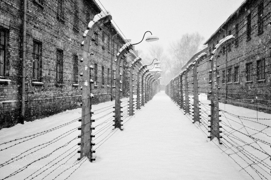 Photograph Auschwitz by Matt Bondi on 500px