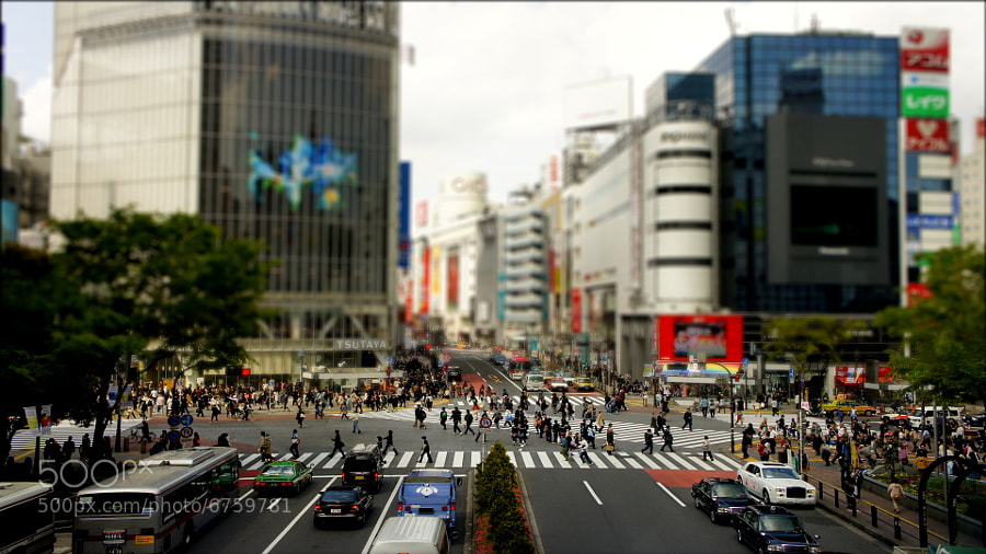 Photograph Shibuya Crossing by Clem Levin on 500px