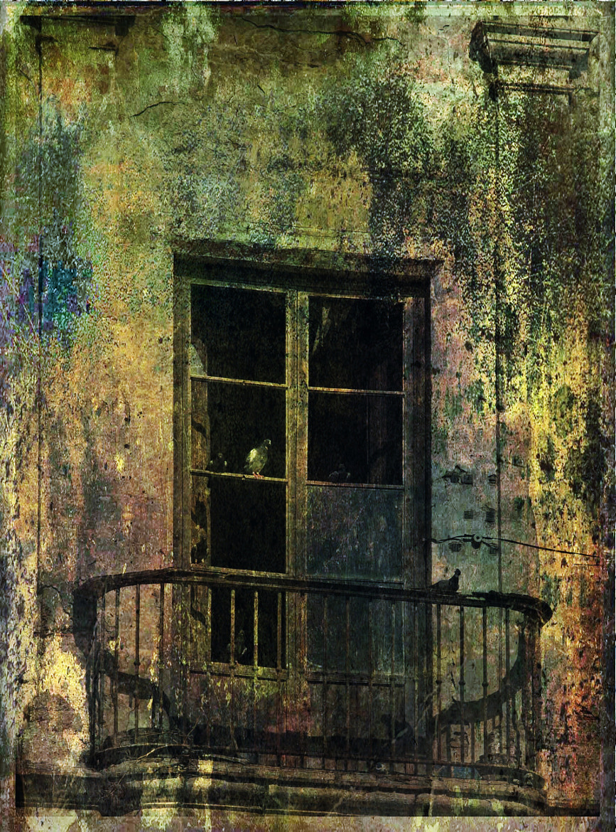 Photograph Decayed balcony by Paul Griffiths on 500px