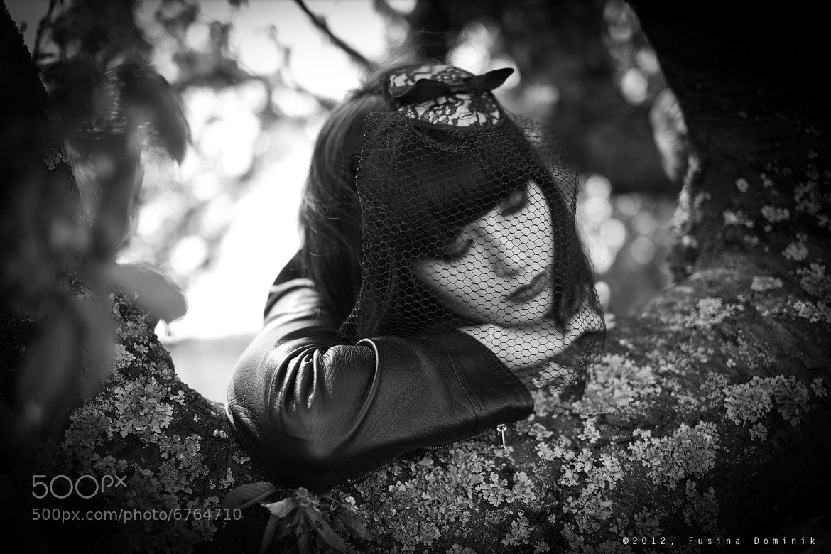 Photograph Under the veil (2) by Dominik Fusina on 500px