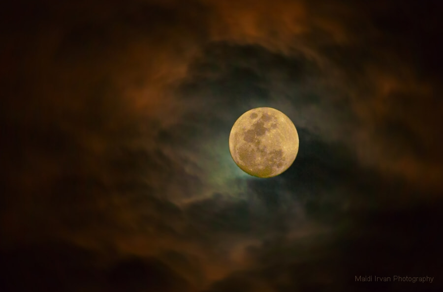 Photograph New Moon by Maidi Irvan on 500px