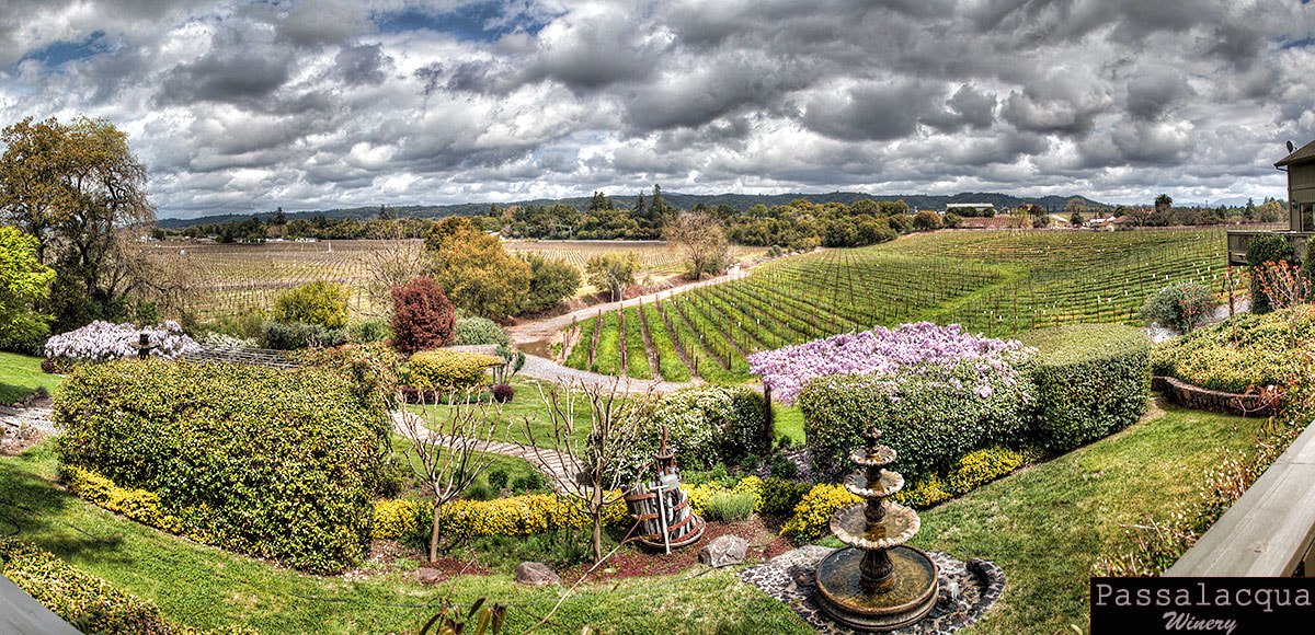 Photograph Passalacqua Winery by Brian Frank Snapshots and HDR on 500px