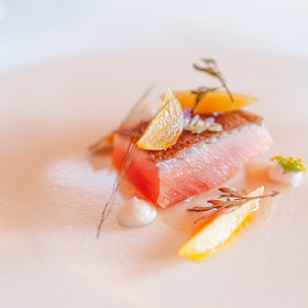 """Roasted trout with peaches and """"forgotten"""" herbs, The Restaurant at Meadowood, St"""