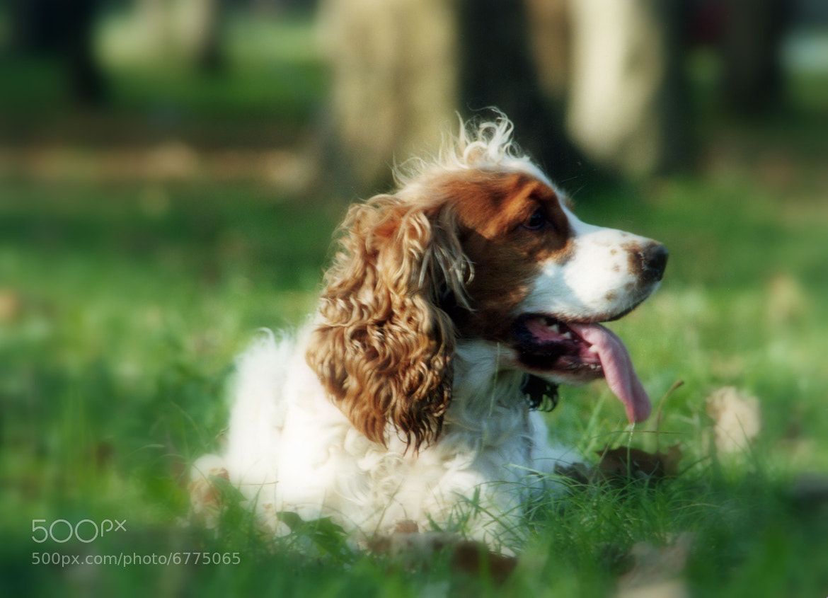 Photograph Florencio by Celina Ortelli on 500px