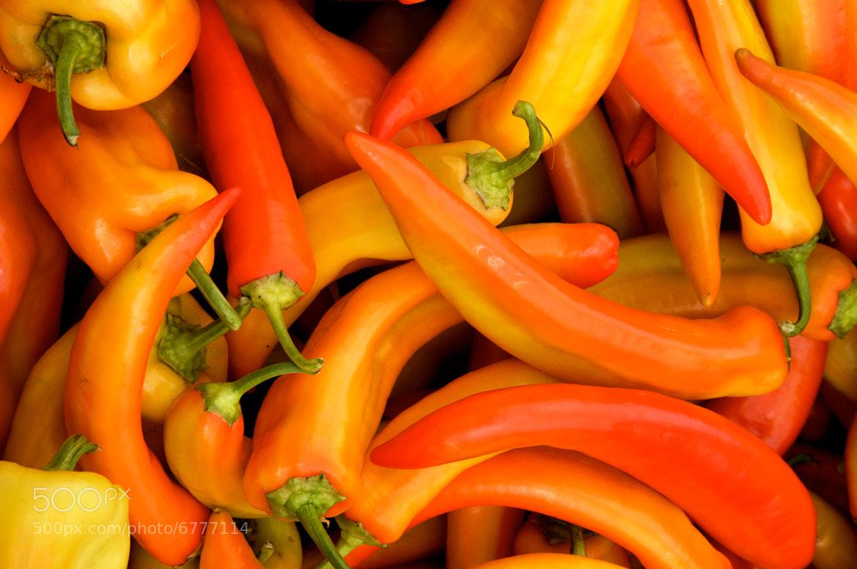 Photograph Spicy by Angel Jimenez de Luis on 500px