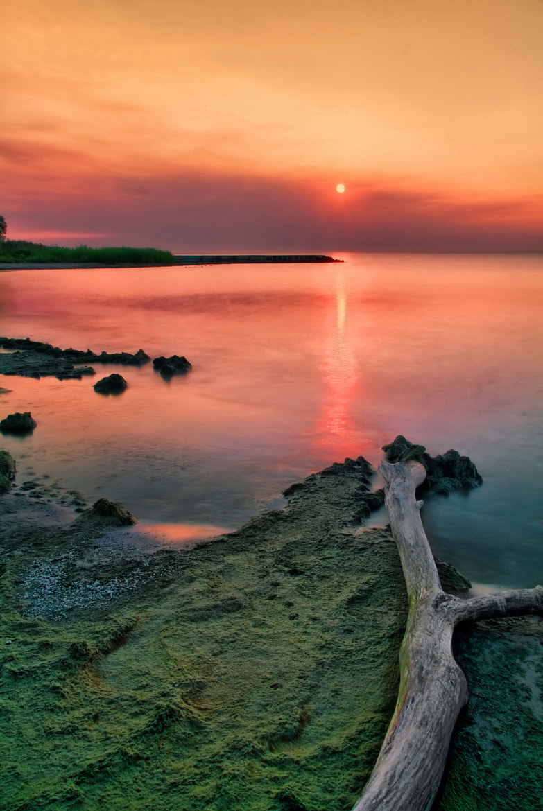 Photograph green mud and sunrise fires by Andrzej Pradzynski on 500px