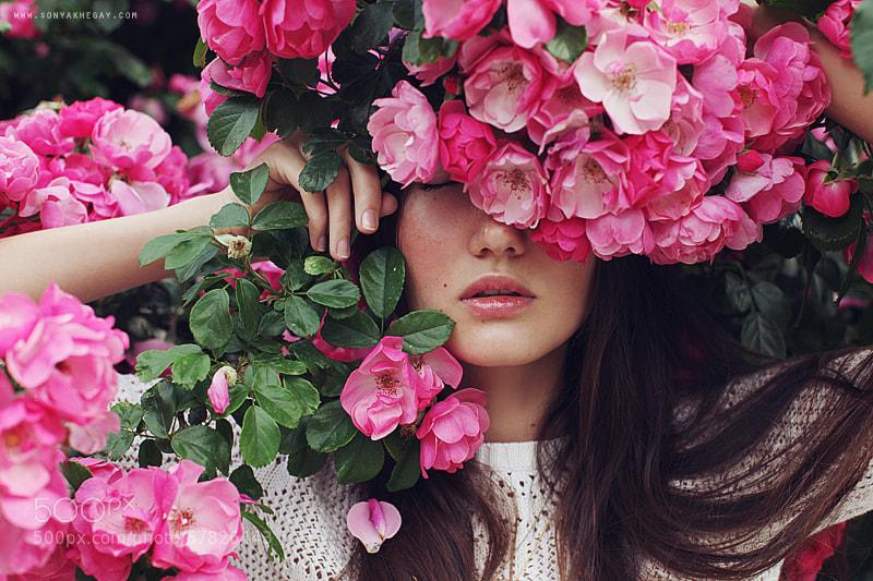 Photograph la vie en rose by Sonya Khegay on 500px