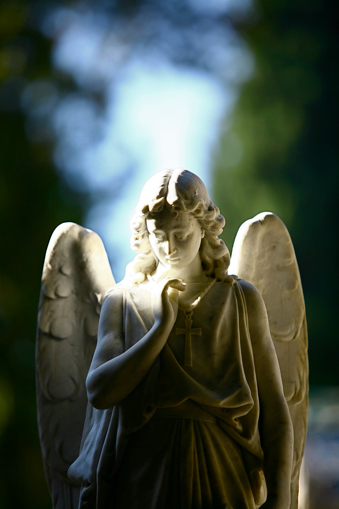 Photograph Angel by Alex Caballero on 500px