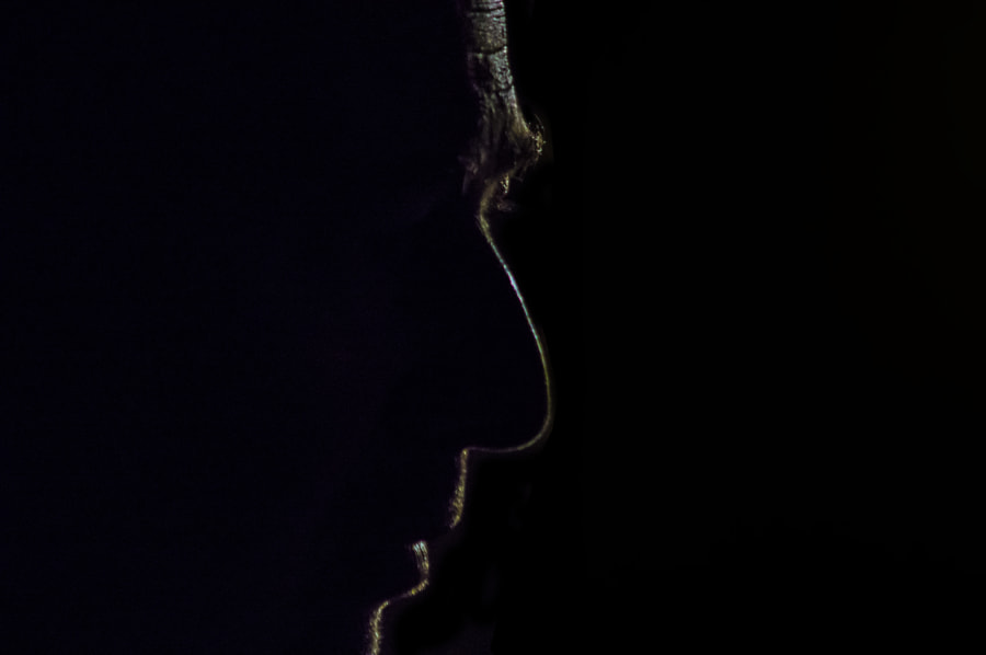 silhouette of a man closeup