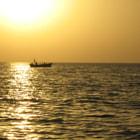 Sea shore in sunset