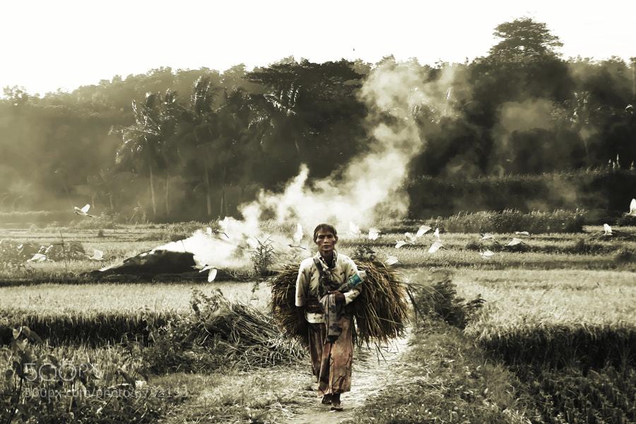 Photograph the spirit of farmer by 3 Joko on 500px