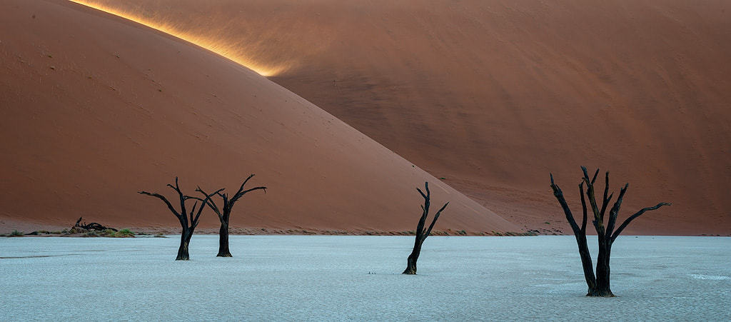 Photograph Lessons From The Desert by Hougaard Malan on 500px