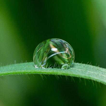 Water drop1