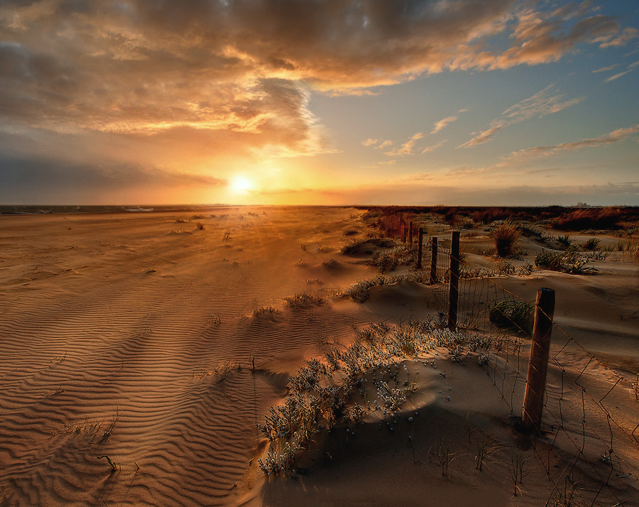 Photograph Sandy Paradise by Fran Moreno  on 500px