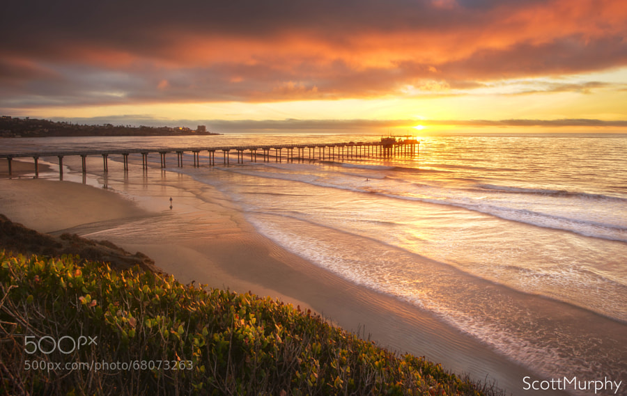 Photograph La Jolla Shores Beach by Scott Murphy on 500px