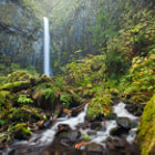 Dry Creek Falls... Oregon... The sheer vertical walls that invert at the mouth of this waterfall were a site to behold... Definitely an awesome place...