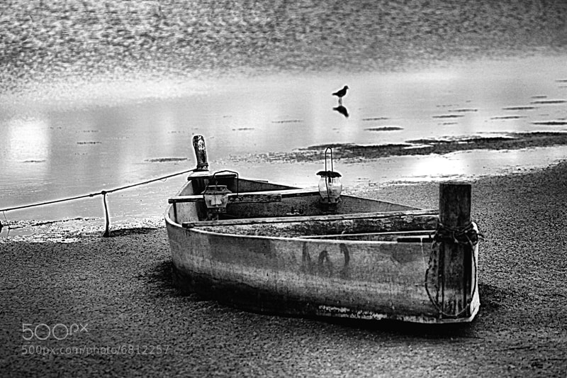 Photograph Alone, somewhere... by Alberto Nogueira Junior on 500px