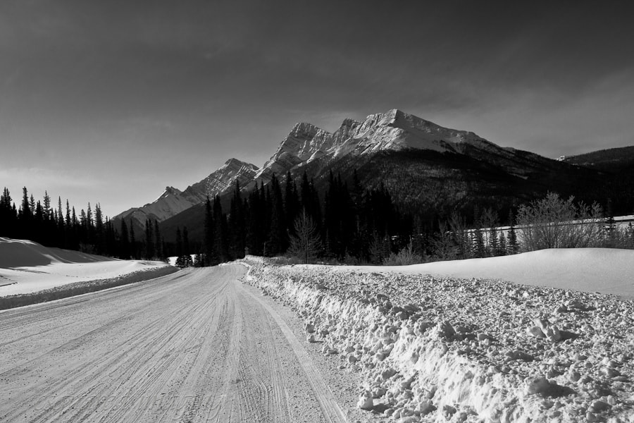 Photograph Alpine Road to Spray Lakes by Corey Teeple on 500px