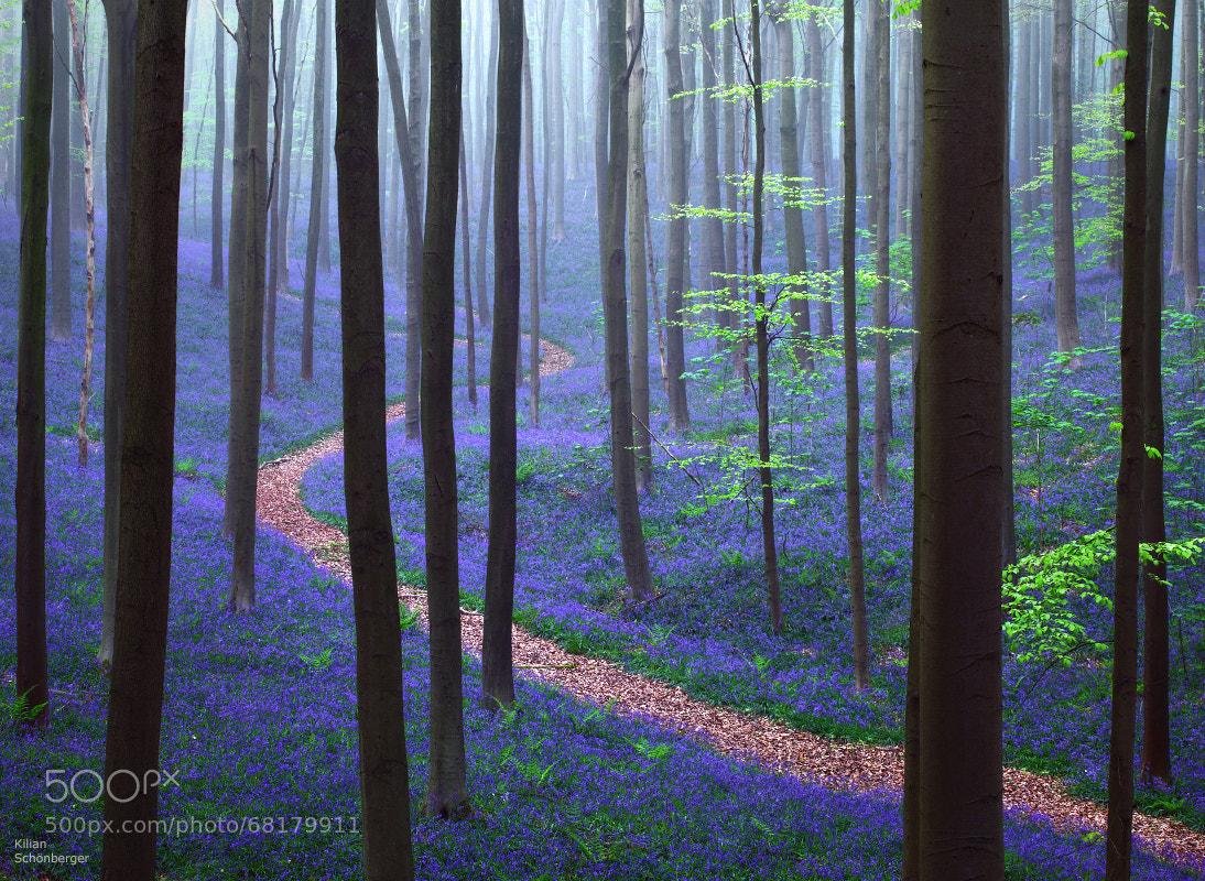 Photograph Natural Wonder by Kilian Schönberger on 500px