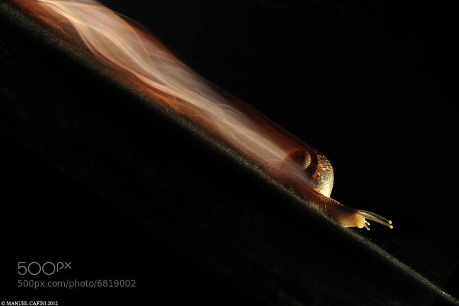 Photograph Fastest Lap : 1 hour 32 minutes 34 seconds by Manuel  Cafini on 500px