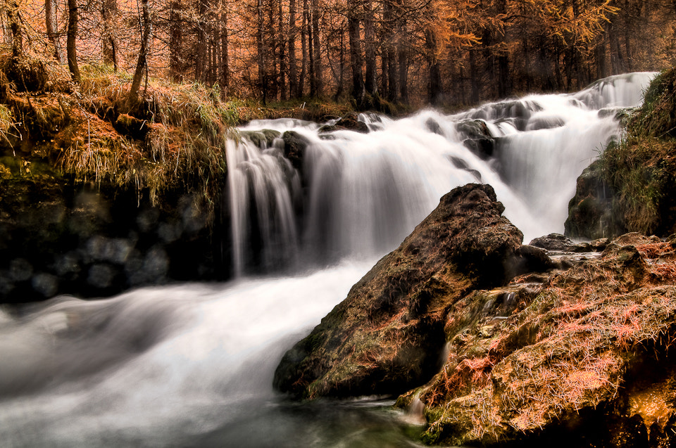 Photograph torrent en automne by Andy Parant on 500px