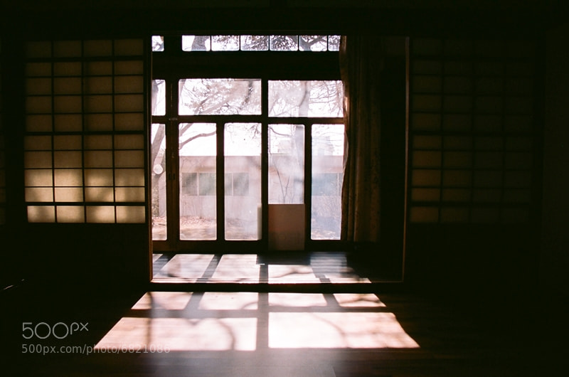 Photograph Sunshine by Jeong Min kyu on 500px