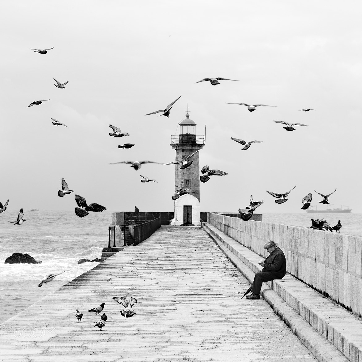 Photograph Hitchcock and his birds by Pedro  Díaz Molins on 500px