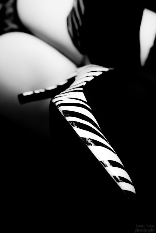 Photograph Zebra Heels by Janus Vanir on 500px