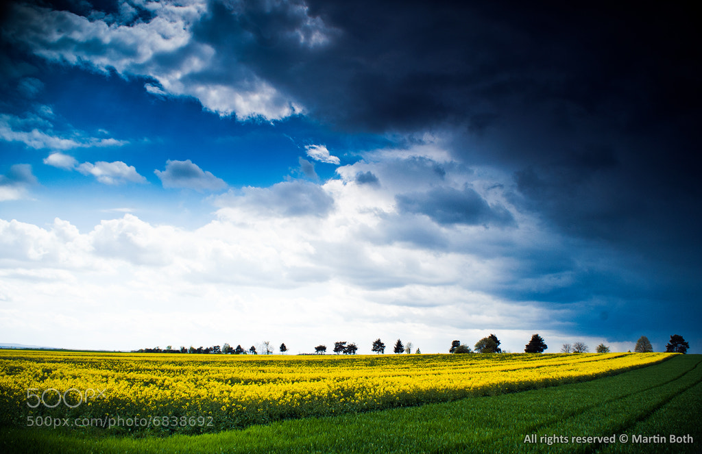Photograph Cloudy day by Martin Both on 500px