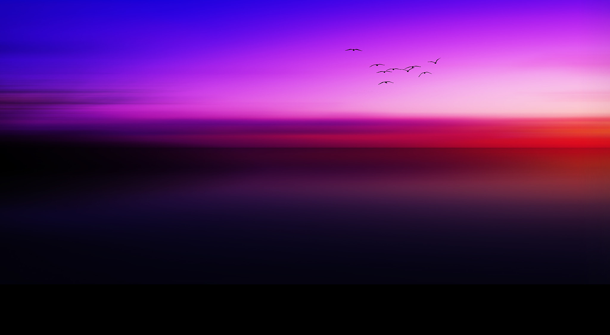 Photograph The Seagulls Melody. by mojaa neddo on 500px