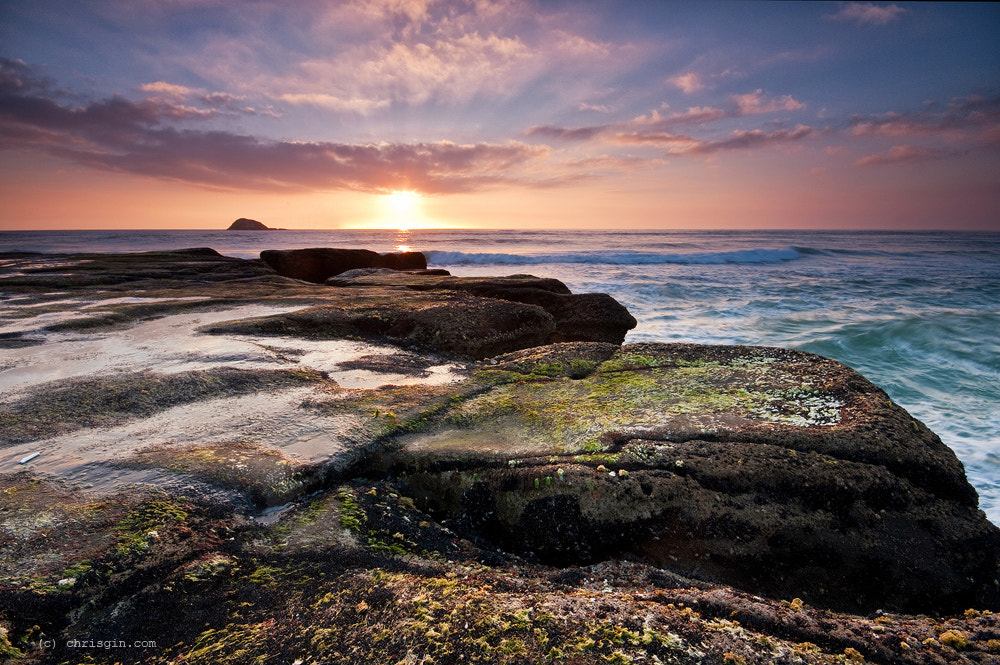 Photograph Muriwai by Chris Gin on 500px