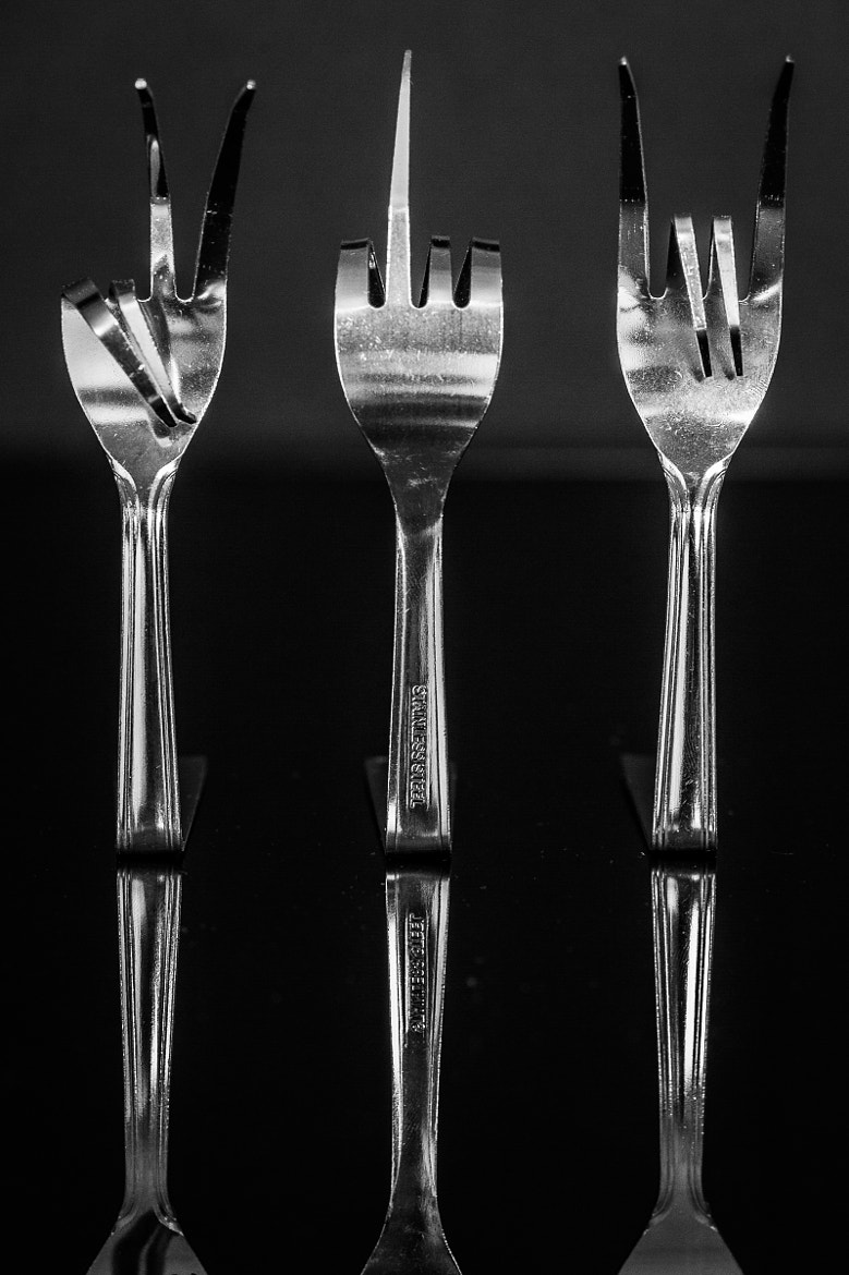 Photograph What The Fork by Iain Blake on 500px