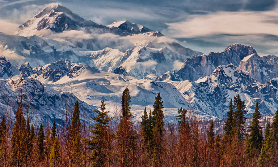 The Great One. Mount McKinley, Alaska by michaelwardierogers  on 500px.com